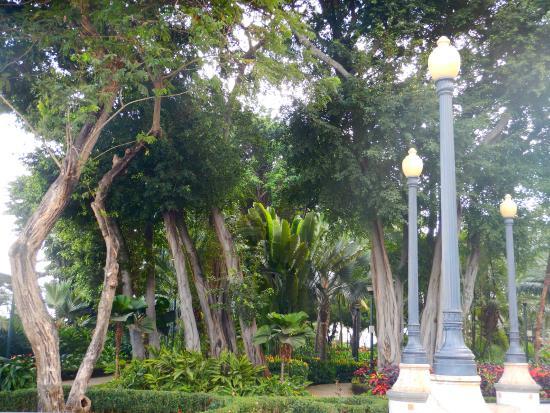 Botanical Garden of Guayaquil: Parque en Malecón 2000