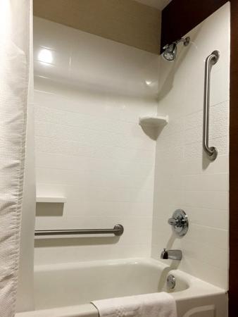 Fairfield Inn & Suites Detroit Farmington Hills : Bathtub