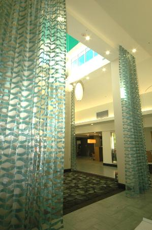 Hilton Garden Inn Fayetteville: Beautiful New Lobby
