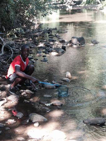 La Chataigne: Crabbing ��