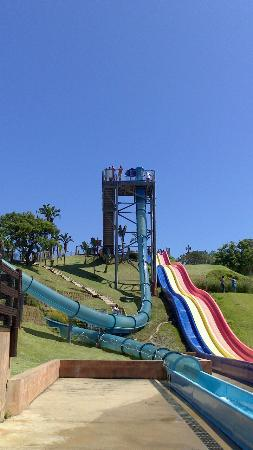 Wild Waves Water Park: Super tube and racer slides
