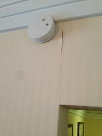 Black Bear Inn & Suites: Open wallpaper seems in multiple areas