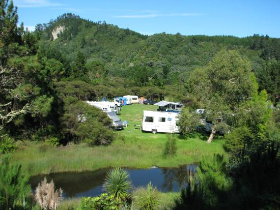 Opoutere Coastal Camping : Camping in paradise