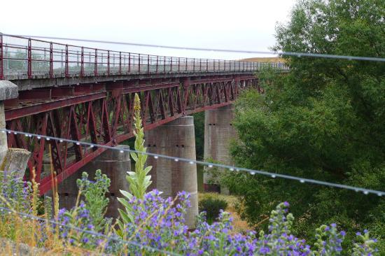 Rail Trail Planner - Day Tours: Manuherikia Bridge - so must history along the way!