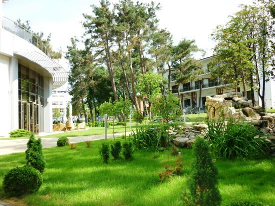 Primorie Spa & Wellness Hotel: территория