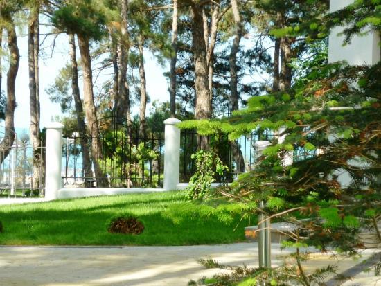 Primorie Spa & Wellness Hotel: территория Отеля
