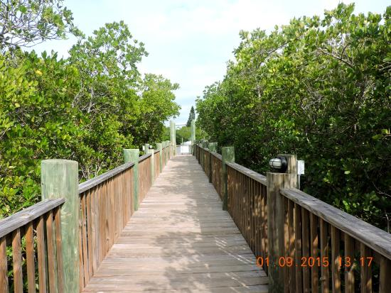 Rum Bay Restaurant: Boardwalk leading to restaurant