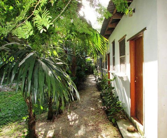 Rio Mopan Lodge -メルチョル・...