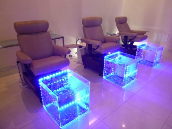 Spa fish pedicures picture of hard rock hotel casino for Fish pedicure price