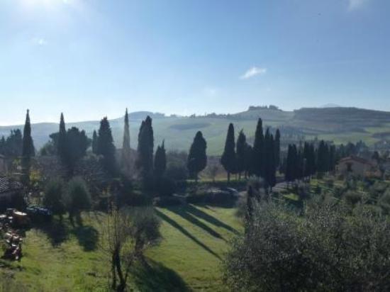Azienda Agricola Barbi: Winter sunshine