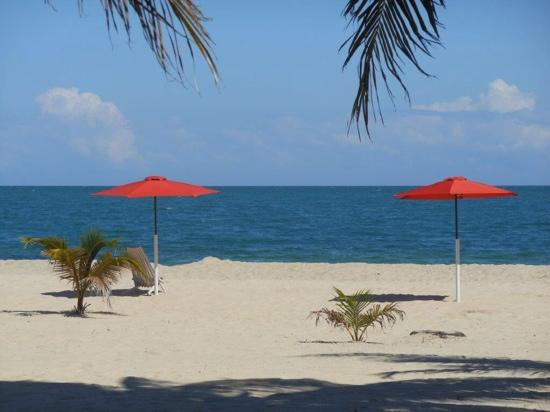 relax under the umbrellas on the beach at Miramar Apartments