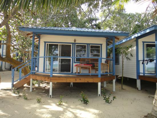 Maya Beach Hotel: kingfish