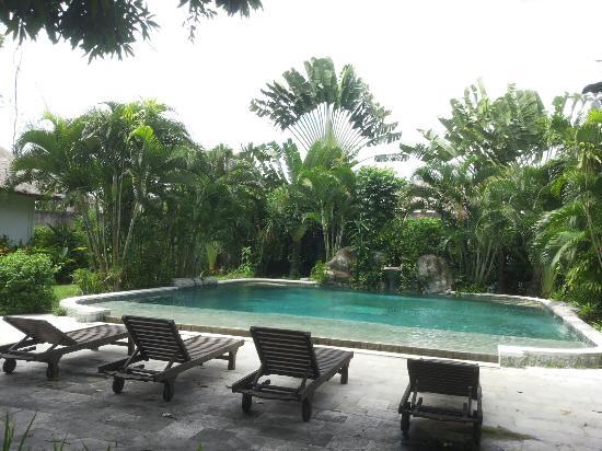 Bali Hidden Paradise Seminyak: The pool