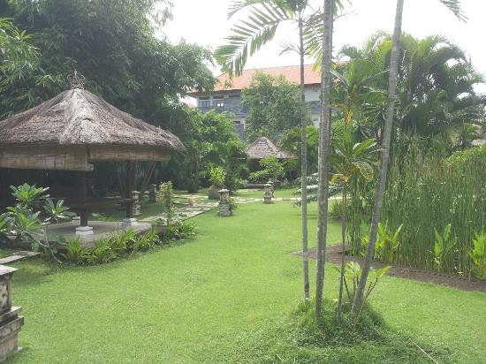 Bali Hidden Paradise Seminyak: Garden