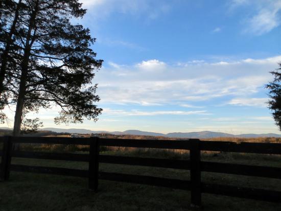 Cedar Spring Inn: Mountain View Driving In