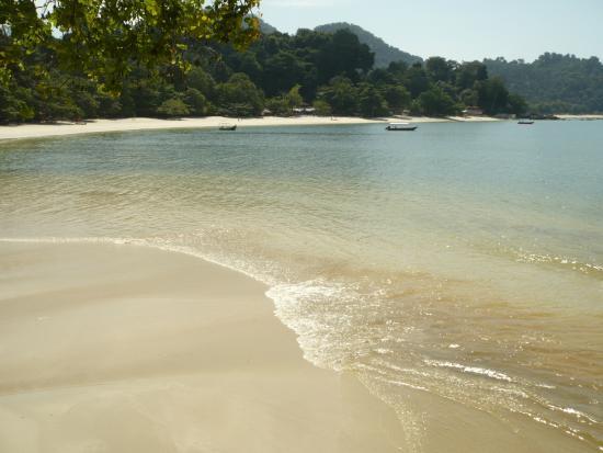 Coral Beach : Pasir Bogak