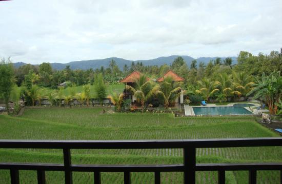 Atres Villa Homestay : Atres Villa grounds
