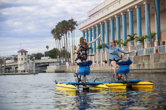 Tampa Bay Water Bike Company