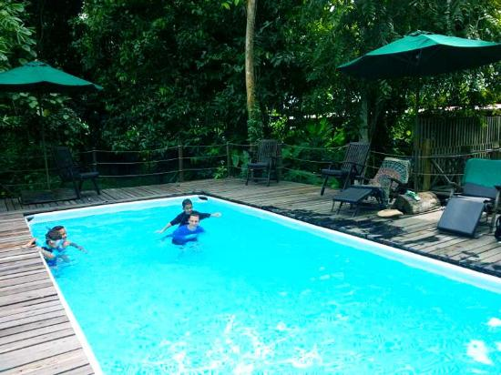 Sukau Rainforest Lodge: A dip pool to cool off your day