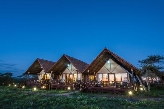 Lake Ndutu Luxury Tented Lodge : tented lodges - memphite.com