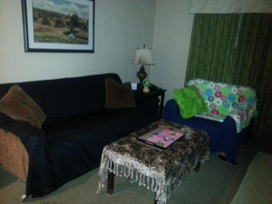 BEST WESTERN Plus Meridian Inn & Suites, Anaheim-Orange: Room after I covered the furniture