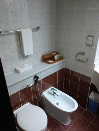 Mayfair Hotel : туалет