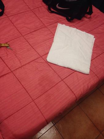 Hotel Diablo : Stain on the quilt and the only towel they gave us for a two night stay was filthy.