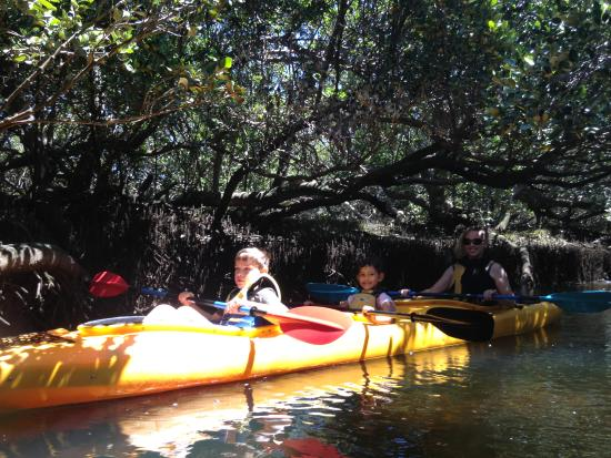 Garden Island Picture Of Adventure Kayaking Sa Adelaide