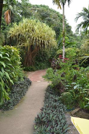 Can-olin Butterfly Sanctuary: Ухоженный сад