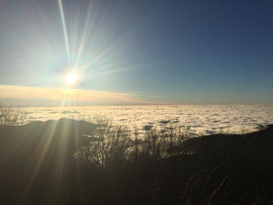 Cherohala Skyway: January 2015.  Above the fog...