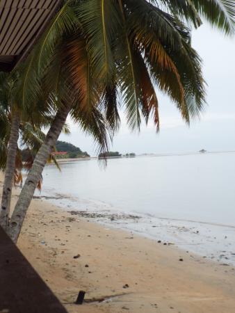 Seaside Travellers Inn: view from room/balcony