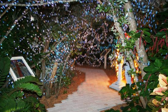 San Pablo Catholic Church: Walkway through trees - all lit up!
