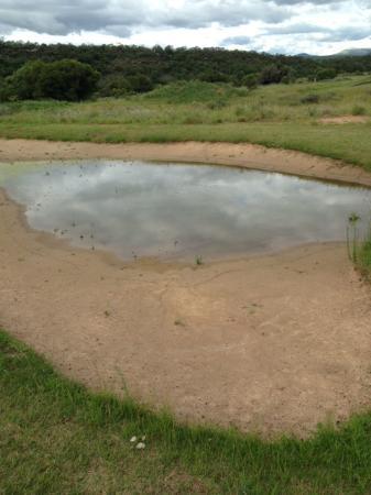Legend Golf and Safari Resort : Bunker 1
