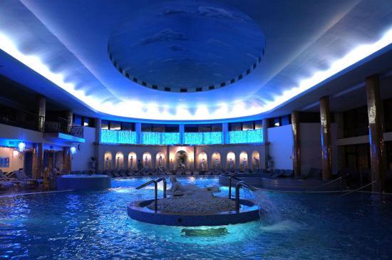 Hotel Izvor : Основной бассейн с минеральной водой 30 градусов