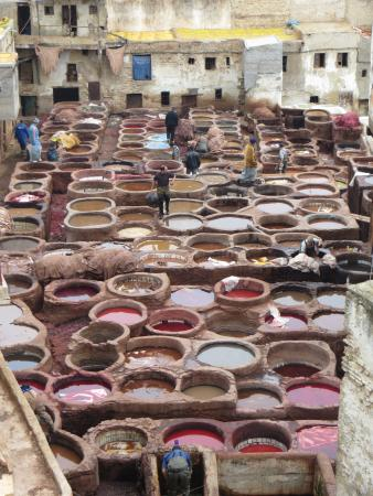Dar el Ma : Visit the tanneries while you are there