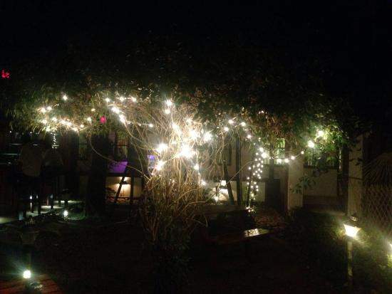 Vrindavanam Heritage Home: The beautiful garden at night