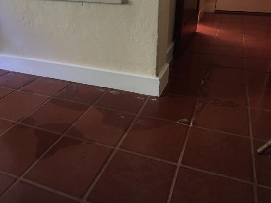 โกลตา, แคลิฟอร์เนีย: Looks like past water damage or something to the tile.  Not a 5 star resort type of quality.