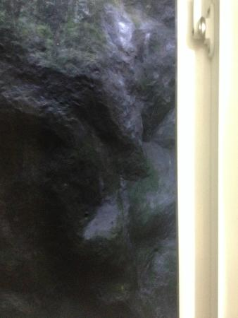 "Hotel Travellers Nest: Вид из номера на ""сад"""