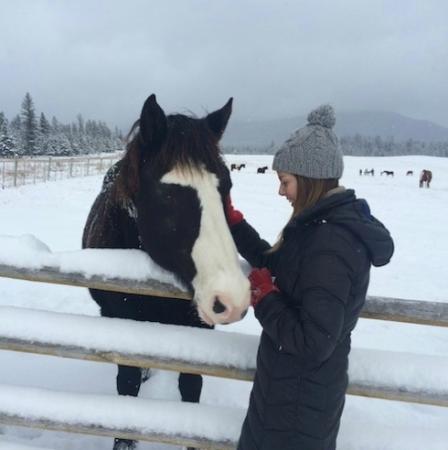Jesmond, Canada: Horses
