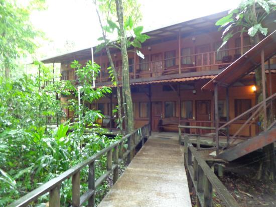 Rana Roja Lodge: Eenvoudige lodge op een leuke locatie