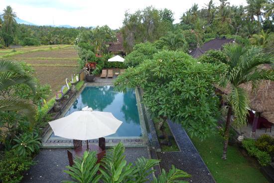 Mandala Desa: Uitzicht op het zwembad