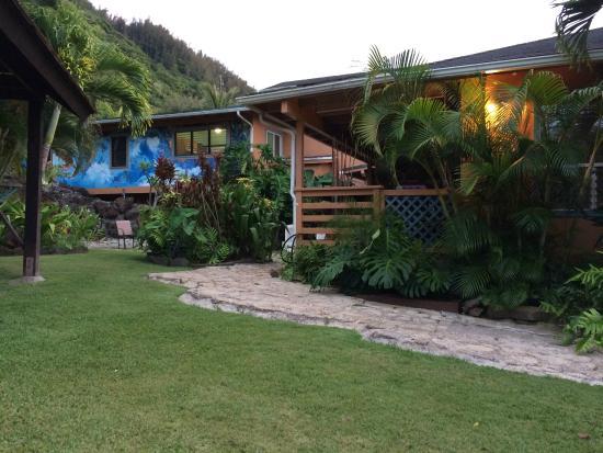 Kalani Hawaii Private Lodging: View from the backyard