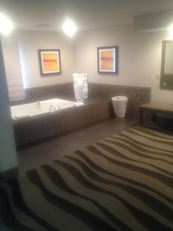 Hampton Inn Oakland-Hayward: Hot Tub, with wet bar along the wall and full length closet across from the hot tub.