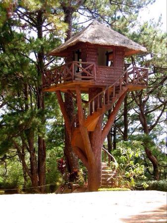 Nipa hut clipart - Clipground