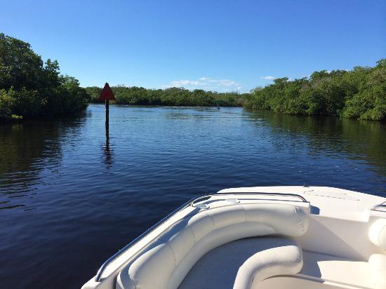 Bay Water Boat Rentals