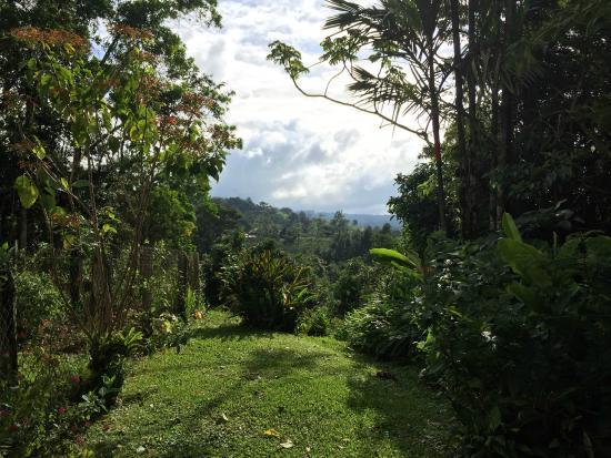 Chalet Nicholas: View towards the east