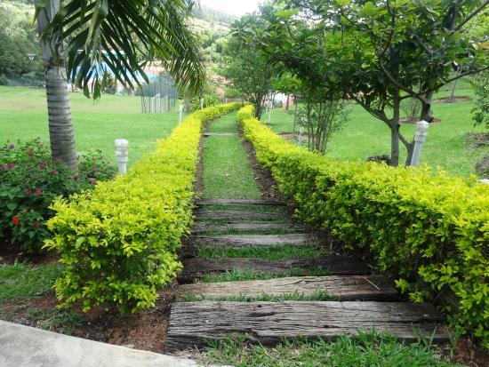 Resort Monte das Oliveiras : Bela Natureza