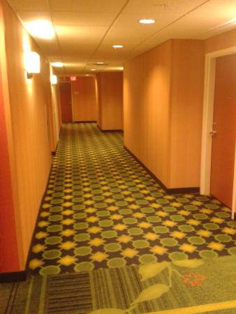 Fairfield Inn & Suites Miami Airport South : Pasillos