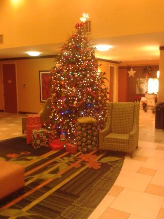 Fairfield Inn & Suites Miami Airport South : Recepción
