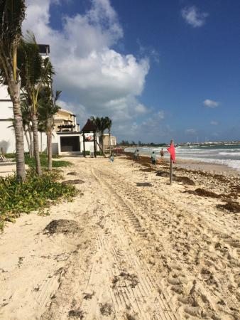 Grand Residences Riviera Cancun : After several days of high winds and surf.